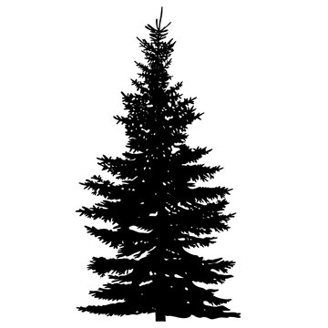 vector, isolated silhouette of a fur-tree
