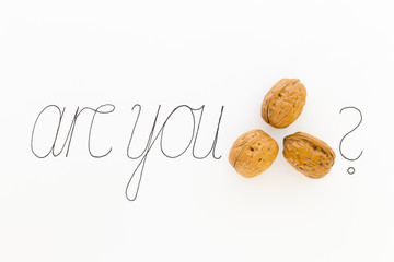 Concept of the phrase are you nuts with brown nuts and black ink hand writing on white paper background