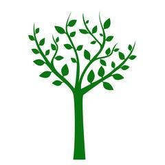 Tree illustration. Vector