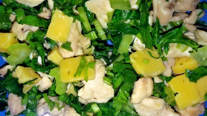 Homemade delicious salad with chicken, cheese, and greens. Chicken and cheese salad closeup.