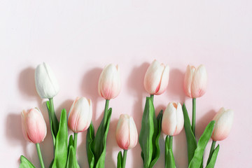 Bouquet of pink tulips on a light wooden painted background.