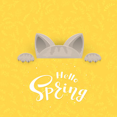 Cat and text Spring