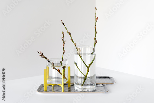 Pussy Willow Branches In Simple Glass Vases Stock Photo And