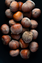 Hazelnuts. Stack of hazelnuts from above. Food background. Hazelnut background. Closeup top view