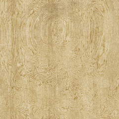 gnarled wooden background texture