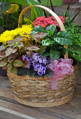 Wicker basket filled with colorful flowers and plants