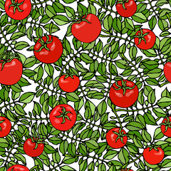 Seamless Pattern of Bunch Cherry Tomatoes on a Branch With Leaves. Botanical Gardening Illustration. Ketchup Logo or Vegetable Salad. Realistic Hand Drawn Vector Illustration. Savoyar Doodle Style.