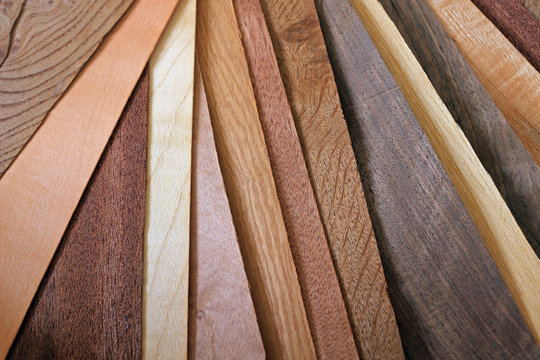 Sheets of Different Woods