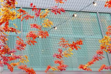 Mit Herbstblättern und Lichterketten dekoriertes Netz im Regen