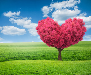 summer green field and pink tree in shape of heart