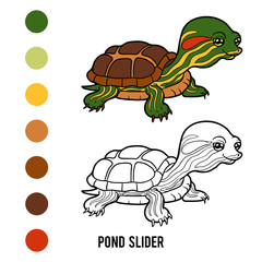 Coloring book, Pond slider