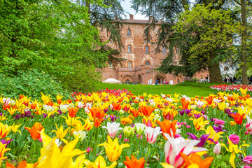 25 April 2013. Castle of Pralormo, garden tulips in Turin, Piedmont, Italy