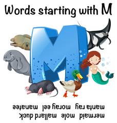 English worksheet for words starting with M