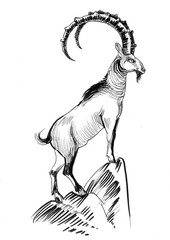 Ink black and white illustration of a mountain goat