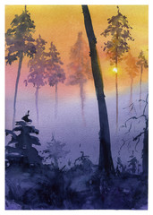 Watercolor forest illustration. Sunset in forest. Sunset forest landscape.