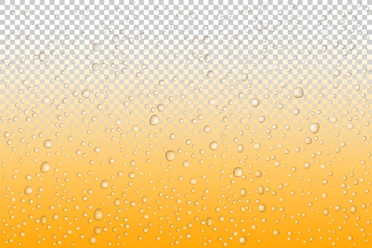 Beer drops on glass, Vector Water drops on glass. Rain drops on transparent background