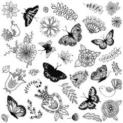 Set of hand drawn abstract flowers, plants, butterflies and birds isolated on white background. Vector illustration.