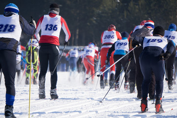 The moment of the start of a large group of colorful skiers at the ski marathon .