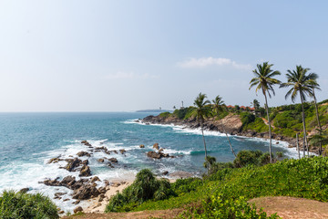 beautiful scenic view of palm trees om coastline and blue sky, sri lanka, mirissa