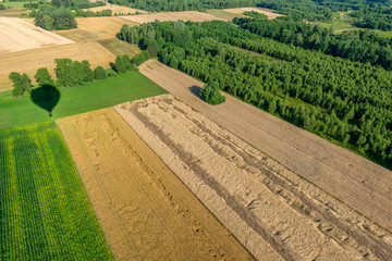 Obraz Cień balonu lecącego nad polami uprawnymi z widokiem na bezchmurne niebo. - fototapety do salonu