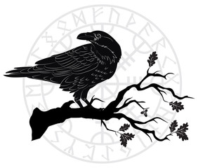 Black crow sitting on a branch of an oak tree, and Scandinavian runes