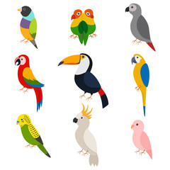 Parrots vector cartoon set: macaw, toucan, green parrot, lovebirds, cockatoos, ara, budgie and other. Flat icons of exotic birds isolated on white background.