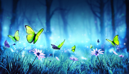 Fairy Butterflies In Mystic Forest