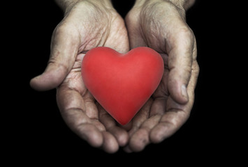Red heart in senior hands over black background