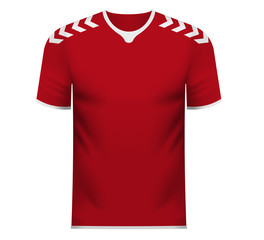 Fan sports tee shirt in generic colors of Denmark