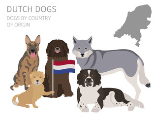 Dogs by country of origin. Dutch (Holland) dog breeds. Infographic template