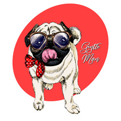 Portrait of hipster pug wearing a glasses and tie bow. Vector engraved detailed dog illustration. Hand drawn. Colored. Good for clothing print, poster, pet shop flyer, party banner. Be a gentleman