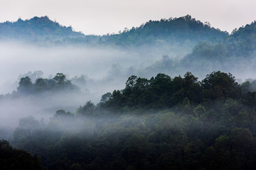 Rain forests and mist-covered mountains, Thailand