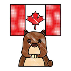 beaver head rodent with canadian flag vector illustration drawing color