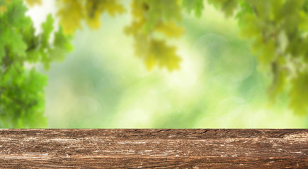 Empty wooden table with spring background