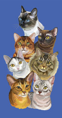 Postcard with cats-3