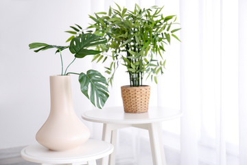 Green plants on small tables in living room