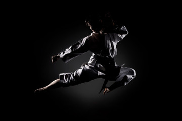 Aluminium Prints Martial arts girl exercising karate