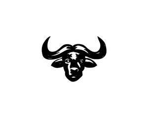 bull buffalo animal