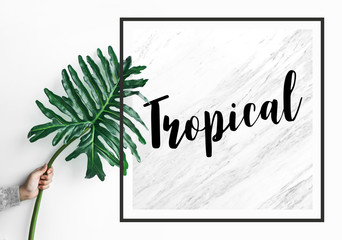 Tropical text with female holding monstera leaf on marble background