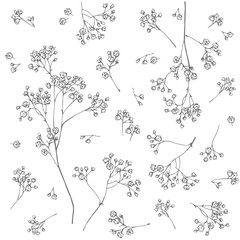 Gypsophila flower. Fragile and airy white flowers. Easy print in rustic style.