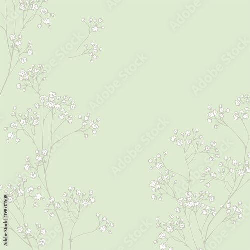 Gypsophila flower  Fragile and airy white flowers  Easy print in