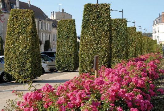château-Thierry, ville du département de l'Aisne, rue fleurie du centre ville, France