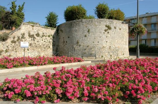 Château-Thierry, ville du département de l'Aisne, Tour des soeurs, roses, France