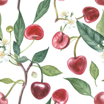 Hand-drawn watercolor wreath of flowers of cherry and leaves illustration. Watercolor botanical illustration seamless pattern.