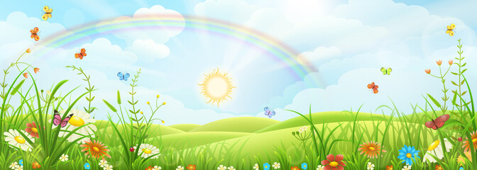 Summer meadow landscape with green grass, flowers and rainbow