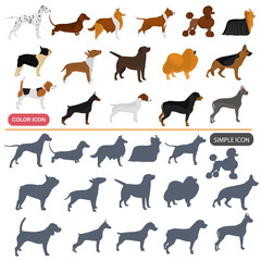 Color flat and simple dogs breeds icons set