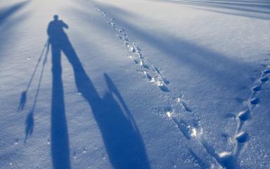 Wandern mit Schneeschuihen - snow shoe trailing