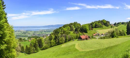 Wall Mural - typische Landschaft am schweizer Bodensee
