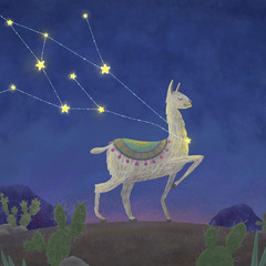 llama, who was caught in the constellation