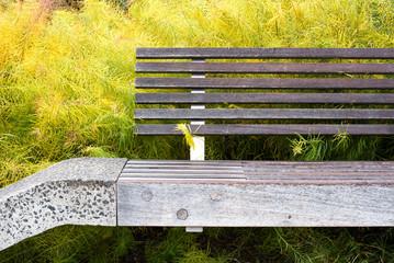 Modern urban park bench seen from the High Line in New York City in Manhattan